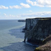 Bempton Cliffs RSPB | northolmefiley.com